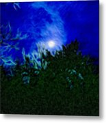 An Affair With Isolation_forest Metal Print