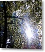 An Alabama Sun Metal Print