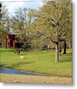 An American Farmer Metal Print