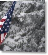 An American Winter Metal Print