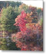 An Autum Day Metal Print