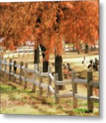 An Autumn Day At The Park Metal Print