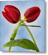 An Embrace Of Tulips Metal Print
