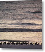 An Evening Stroll Metal Print