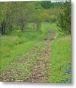 An Inviting Path Metal Print
