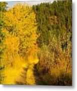 An October Path   Metal Print