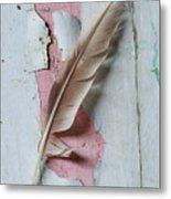 An Old Door And Feather Metal Print