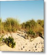 An Opening In The Fence - Jersey Shore Metal Print