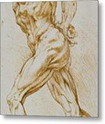 Anatomical Study Metal Print