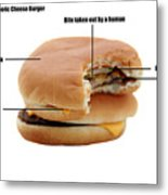 Anatomy Of A Generic Cheese Burger Metal Print by Michael Ledray