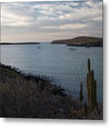 Anchorage  Metal Print