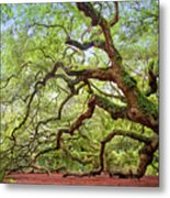 Ancient Angel Oak Tree  Metal Print