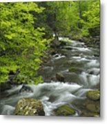 Ancient Cascades In Great Smoky Mountains Metal Print