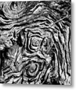 Ancient Stump Metal Print