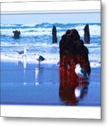 Ancient Trees And Seagulls At Neskowin Beach Metal Print