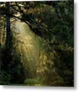 And A New Day Will Dawn... Metal Print