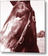 and Fancy was her name Metal Print