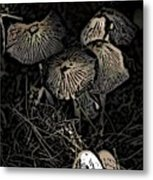 And Your Mind Begins To Grow Metal Print