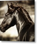 Andalusian Spirit Metal Print