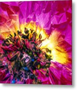 Anemone Abstracted In Fuchsia Metal Print