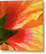 Angel Brushstrokes  Metal Print