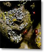 Angel Bugs Metal Print