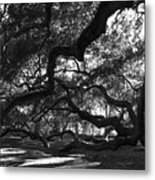 Angel Oak Limbs Bw Metal Print