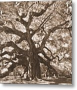 Angel Oak Sepia Metal Print