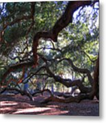 Angel Oak Side View Metal Print