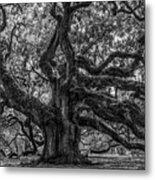 Angel Oak Tree Americana Metal Print