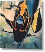 Angelfish Metal Print