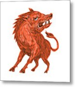 Angry Razorback Ready To Attack Drawing Metal Print