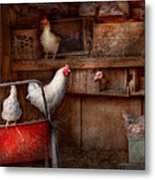 Animal - Chicken - The Duck Is A Spy  Metal Print by Mike Savad