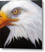 Animal- Eagle Metal Print