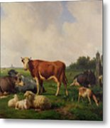 Animals Grazing In A Meadow  Metal Print by Hendrikus van de Sende Baachyssun