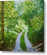 Annecy Forest Afternoon Metal Print