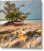 Annes Beach Metal Print