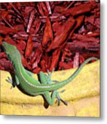Anole Getting A Better Look Metal Print