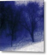 Another Blue Day Metal Print