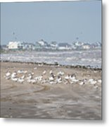 Another Day At The Beach Metal Print