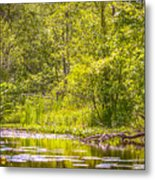 Another Day At The Lake Metal Print