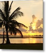 Another Day In Paridise Metal Print