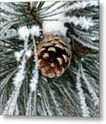 Another Frosty Pine Cone Metal Print
