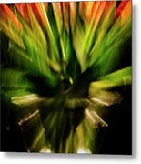Another Tulip Explosion Metal Print