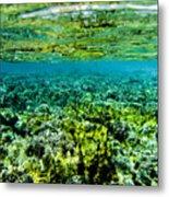 Ant Atoll Reef Metal Print