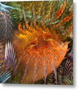 Antecedent To The Emergence Metal Print