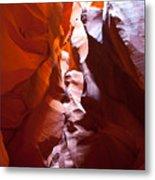Antelope 12 Metal Print