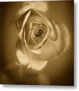 Antique Soft Rose Metal Print