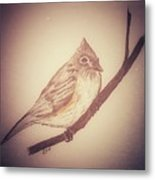 Antique Titmouse Metal Print by Ginny Youngblood