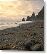 Anxiety Morning On The Ocean Shore. Metal Print
